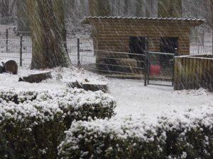 Winter door Roland_02Lweb