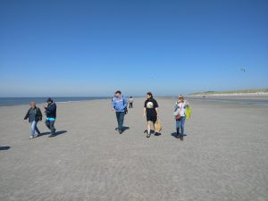 dagje strand_web2