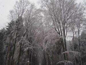 Winter door Roland_05Lweb